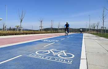 Bicycle Paths